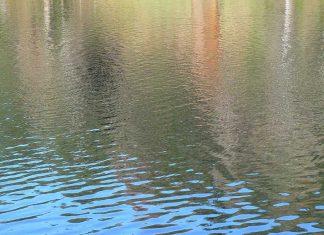 Drowning - Aliza Abusch-Magder - jGirls Magazine