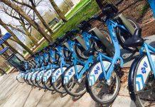 Bike Share - Audrey Honig - jGirls Magazine