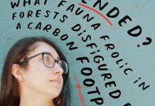 Elevating Unheard Voices by Elizabeth Shvarts